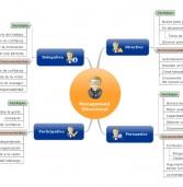 El Management Situacional en Mapa Mental
