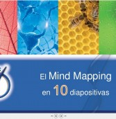 10 Diapositivas para conocer el Mind Mapping