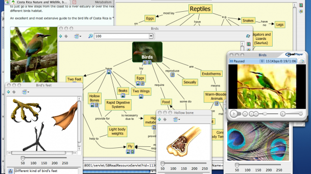 Aplicaciones Mapas Conceptuales